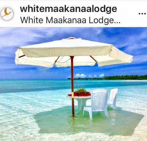 Programma di viaggio Maldive