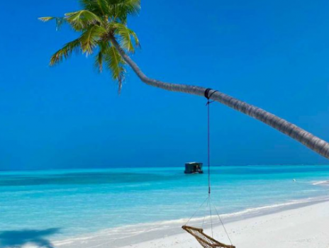 SPECIALE MALDIVE by IGV